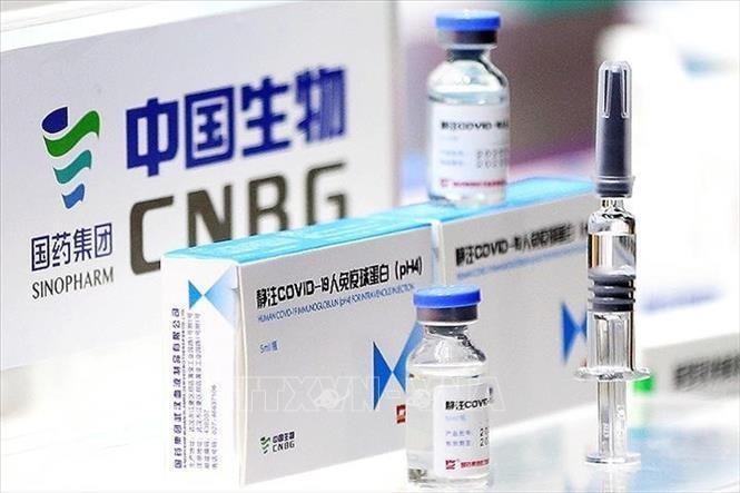 OMS evaluará la efectividad de vacunas Sinopharm y CoronaVac para su uso en emergencias - ảnh 1