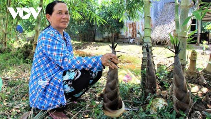 Nguyen Trung Duc y sus bambúes cultivados en tierras salinas - ảnh 2