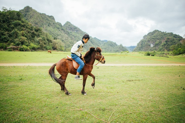 Estepa de Dong Lam: un destino ideal para hacer pícnic - ảnh 12