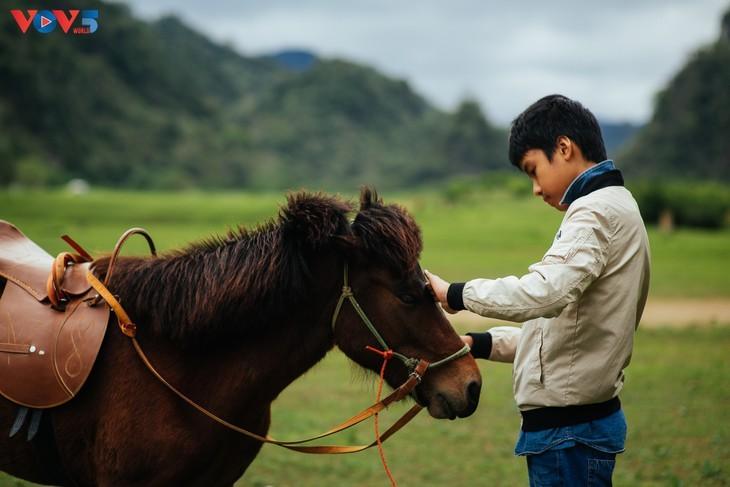Estepa de Dong Lam: un destino ideal para hacer pícnic - ảnh 14