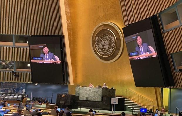 Aportes de Vietnam en virtud de presidente del Consejo de Seguridad de la ONU  - ảnh 1