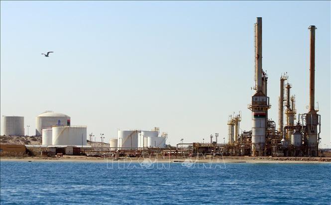 Inauguran conferencia ministerial en línea del OPEP y socios - ảnh 1