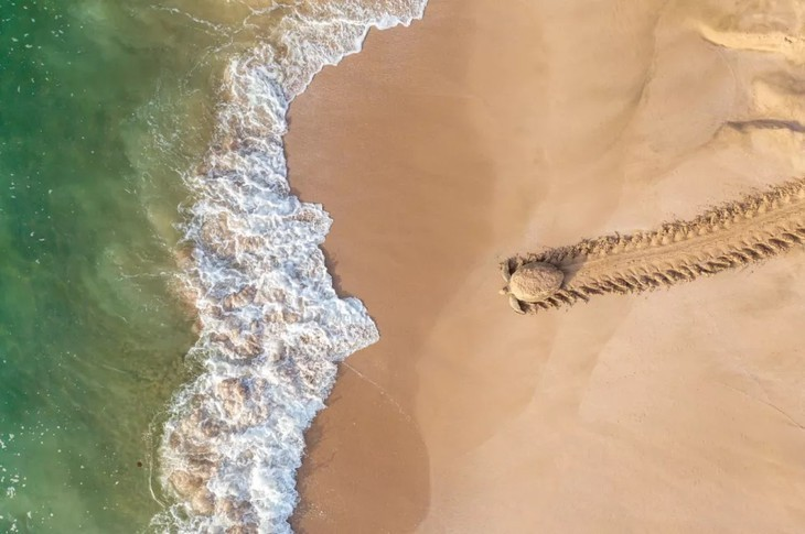 Foto de la laguna de Tam Giang: ganadora de Drone Photo Awards - ảnh 4