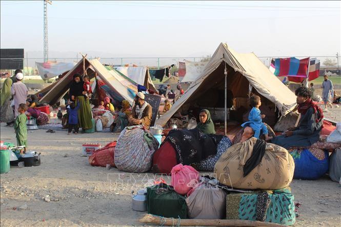 ONU alerta sobre una hambruna en Afganistán - ảnh 1