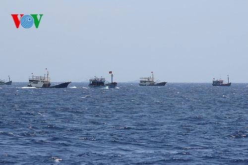 中部漁民、中国の横暴な行為にも屈せず - ảnh 3