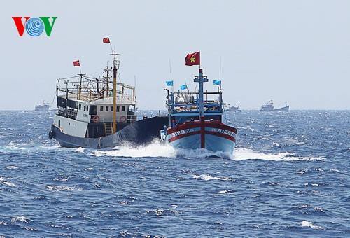 中部漁民、中国の横暴な行為にも屈せず - ảnh 4