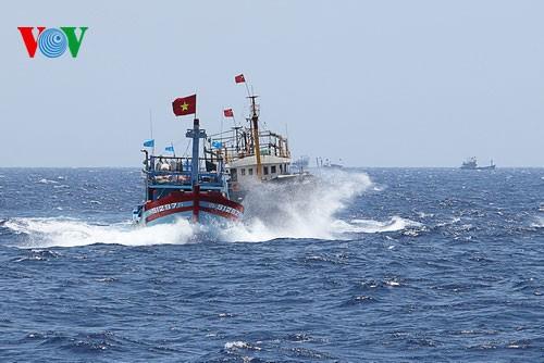 中部漁民、中国の横暴な行為にも屈せず - ảnh 5