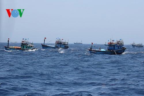 中部漁民、中国の横暴な行為にも屈せず - ảnh 9