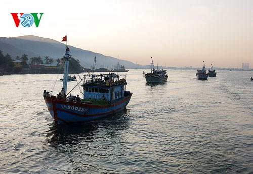 中部漁民、中国の横暴な行為にも屈せず - ảnh 1