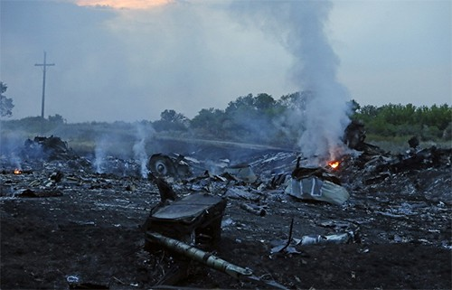 ASEAN、マレーシア機墜落の調査を呼びかける - ảnh 1