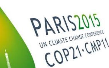 COP21 非公式の閣僚級協議開催へ - ảnh 1