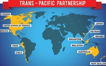 TPPがベトナムにもたらすチャンスと試練 - ảnh 1