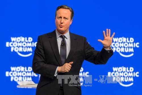 英EU残留のカギ握る若者票 - ảnh 1