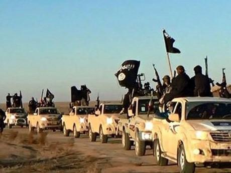 シリアとイラクに外国人戦闘員3万人=出身国でテロの危険増大-国連高官 - ảnh 1