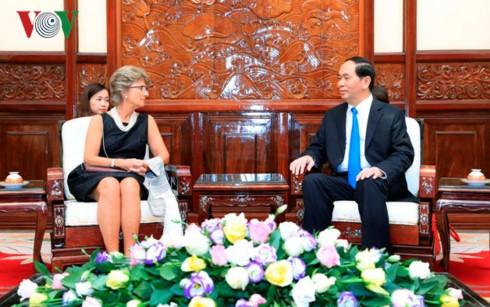 クアン主席、越駐在各国大使と個別会見 - ảnh 1