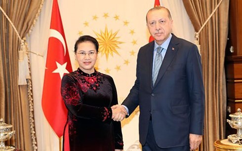 ガン国会議長 ユーラシア議会議長会議への出席とトルコ訪問を終了 - ảnh 1
