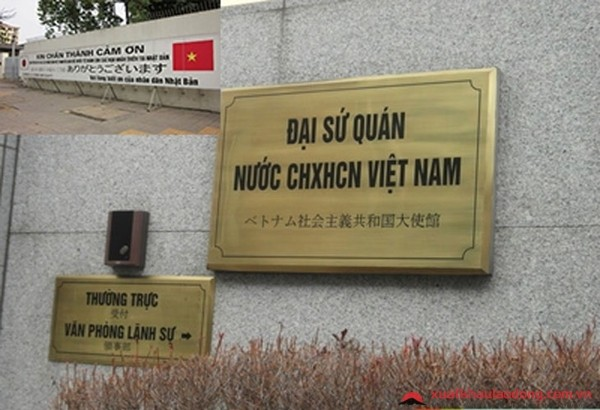 Covid 19 対応:在日ベトナム大使館、ホットラインを設置 - ảnh 1