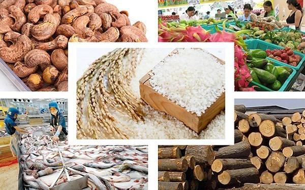 農産物の生産・輸出を促進  - ảnh 1