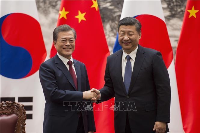 青瓦台、習近平主席訪韓延期報道を否定 - ảnh 1