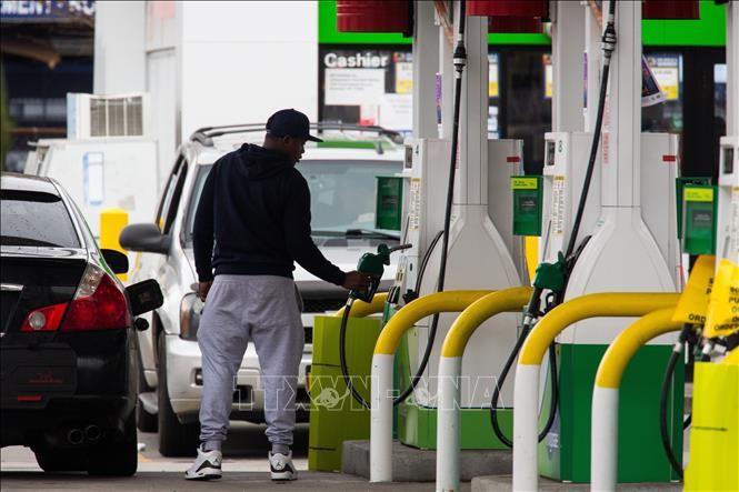OPECプラスの減産合意、需給均衡化が狙い=サウジ閣僚 - ảnh 1