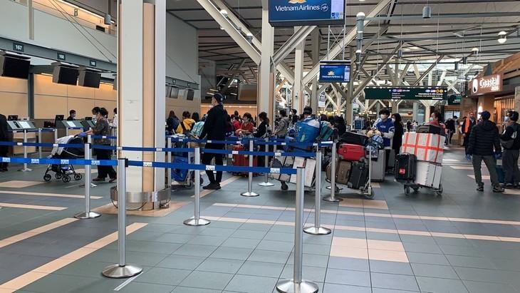 345人のベトナム人 米国から帰国 - ảnh 1