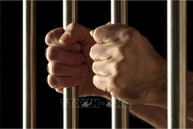 イラン拘束の米元軍人解放、米拘束のイラン系医師も 収監者交換 - ảnh 1