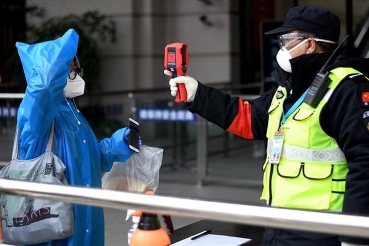 新型コロナ、中国本土で新たに22人感染確認 全て「輸入症例」 - ảnh 1