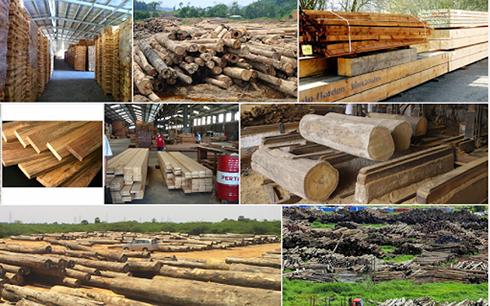 木材と木工製品の輸出 - ảnh 1