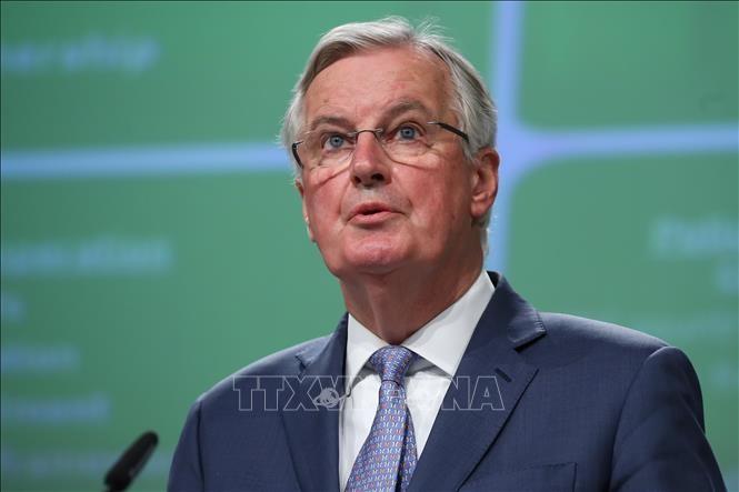 EU大使級会合、英離脱問題を議題から削除 合意なき移行期間終了に身構え - ảnh 1