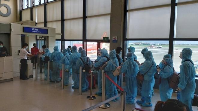台湾で足止めのベトナム人230人が帰国 - ảnh 1