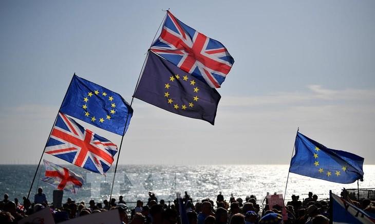 英国との個人データ移転 EUが認める方針 - ảnh 1