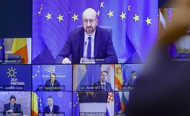 EU首脳会議 移動制限などの措置 当面継続で一致 - ảnh 1
