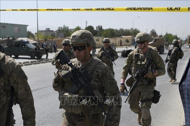 米、アフガン政府にタリバーンとの暫定的合意を提案 - ảnh 1