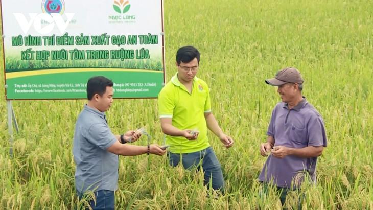 農産物経営でスタートアップを成功させた青年たち - ảnh 1