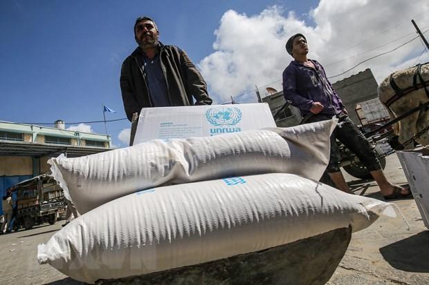 米バイデン政権 パレスチナ経済支援の再開を発表 - ảnh 1