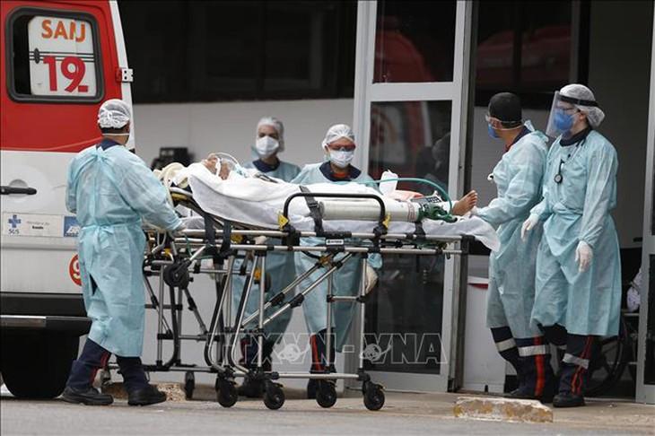 新型コロナウイルス、現在の感染者・死者数 - ảnh 1