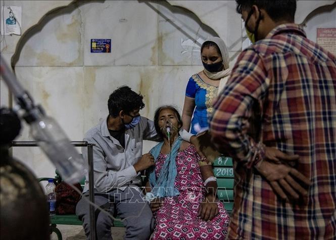 新型コロナウイルス、現在の感染者・死者数(25日午後7時時点) 死者310万人に - ảnh 1