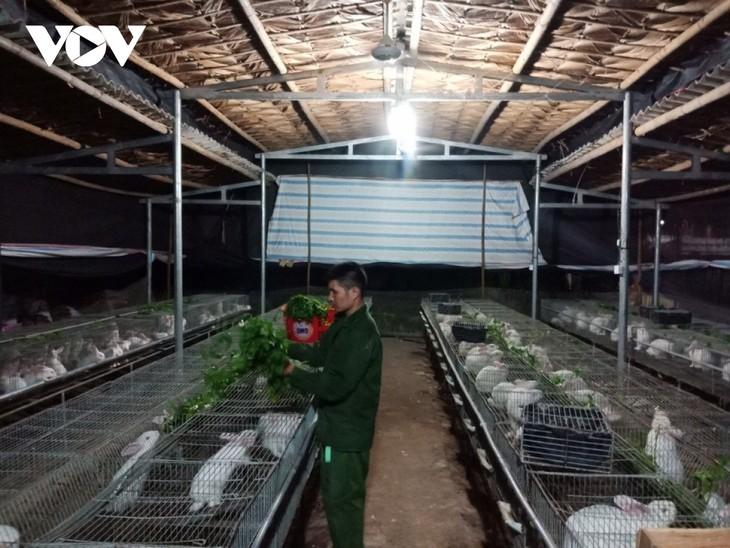 ウサギの飼育などで経済発展を遂げた青年たち - ảnh 2