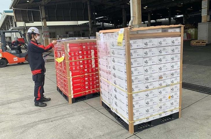 日本向けのベトナム産ライチの新しい輸出業者 - ảnh 1
