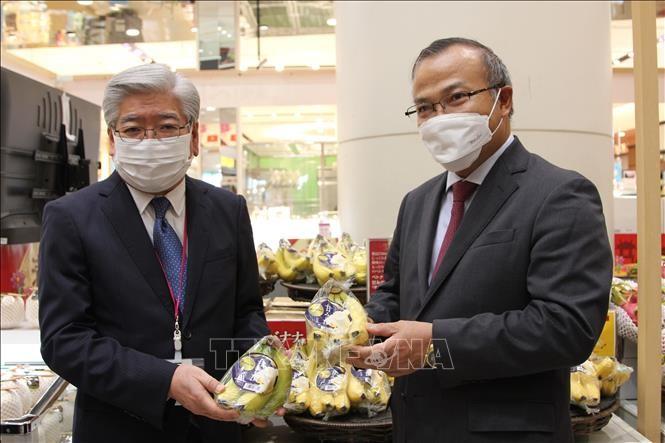 ベトナム産のバナナ 日本でPR  - ảnh 1