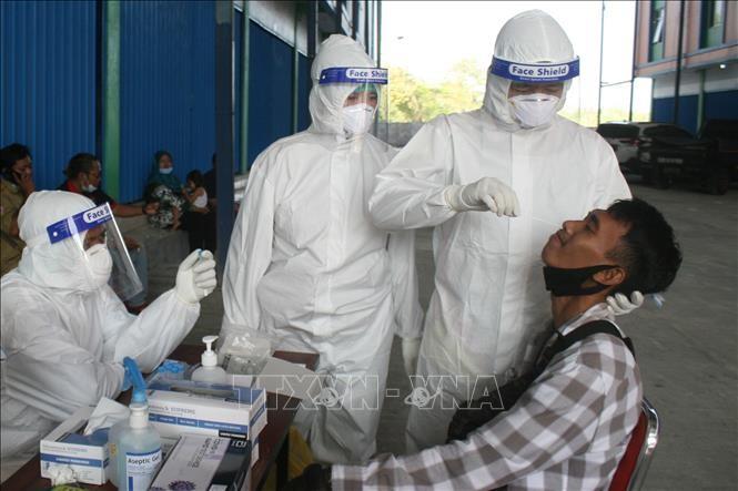 新型コロナ :世界の感染者2億人に迫る - ảnh 1