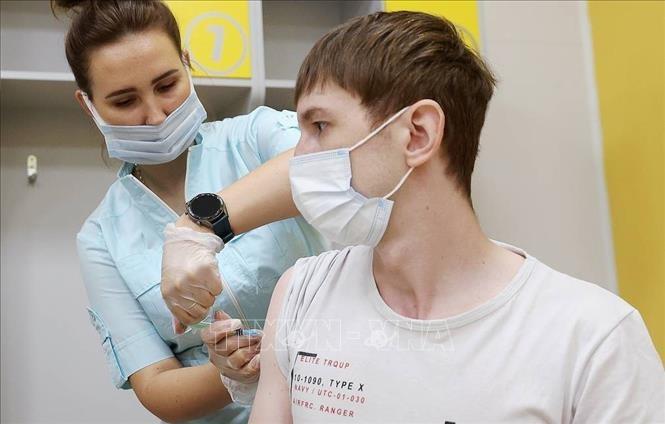 新型コロナウイルス、現在の感染者・死者数  死者465.6万人に - ảnh 1