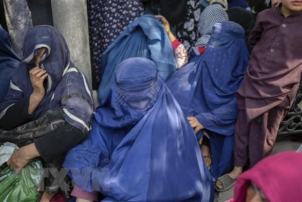 アフガニスタン情勢 G20国連機関通じ人道支援行うこと確認 - ảnh 1