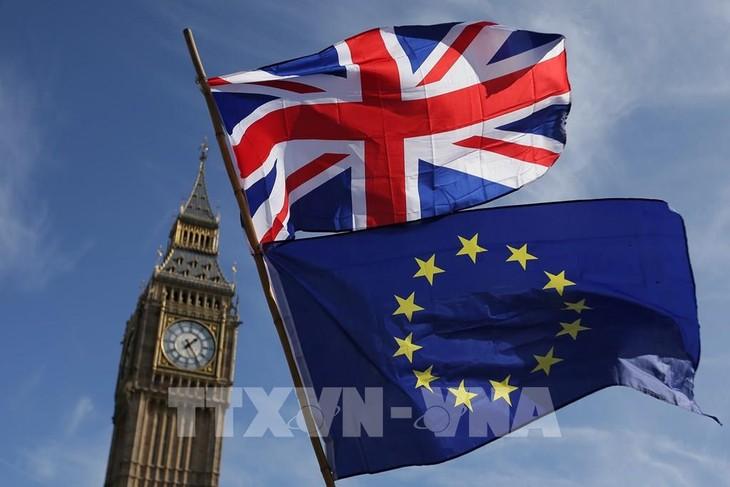 英「北アイルランド議定書」変更案をEUに提示 不満強く - ảnh 1