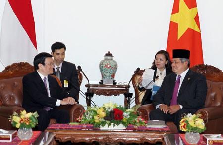 Tonggak merah bersejarah dalam hubungan kemitraan strategis Vietnam-Indonesia - ảnh 1
