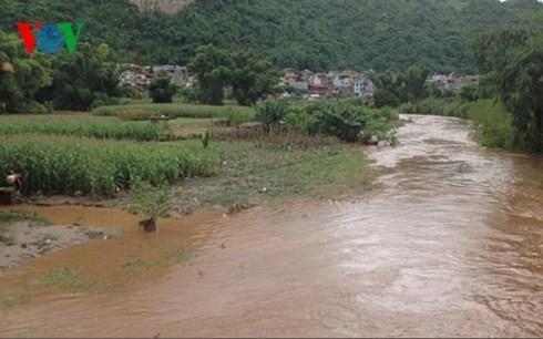 Daerah-daerah di Vietnam Utara  berupaya mencegah dan menanggulangi hujan dan banjir. - ảnh 1