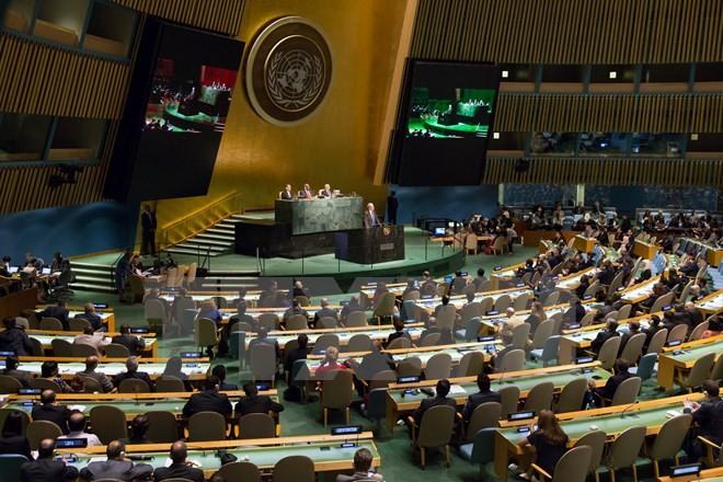 PBB sepakat dengan rancangan  rencana perkembangan yang berkesinambungan - ảnh 1