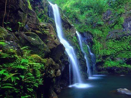Taman Nasional Phong Nha-Ke Bang- destinasi yang menarik bagi para wisatawan - ảnh 1