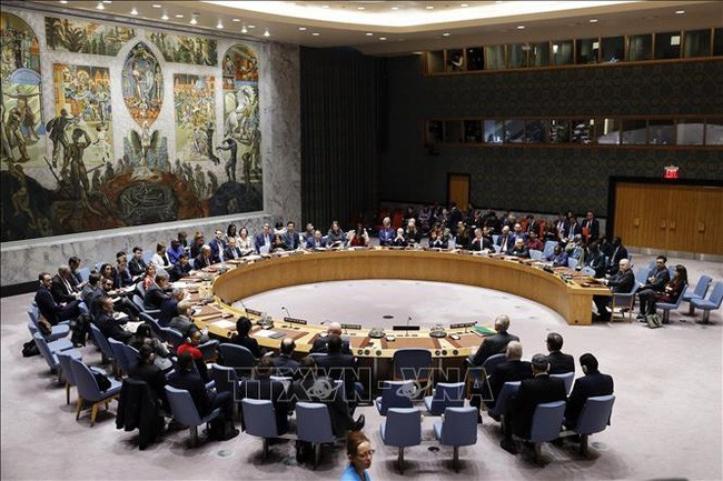 DK PBB  untuk pertama kalinya membahas pandemi Covid-19 - ảnh 1