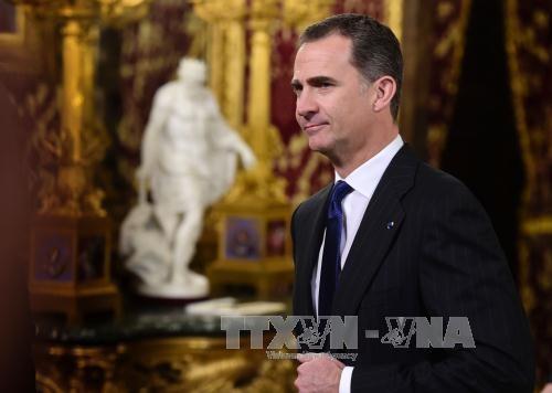 Raja Spanyol terkesan akan keberhasilan Vietnam dalam mencegah dan menanggulangi wabah Covid-19 - ảnh 1